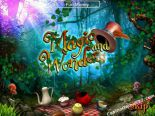 online spielautomat Magic And Wonders SkillOnNet