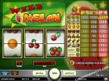 online spielautomat Wild Melon Play'nGo